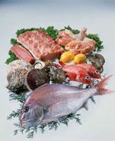 魚介と豚肉と鶏肉 20013023548| 写真素材・ストックフォト・画像・イラスト素材|アマナイメージズ
