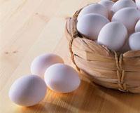 卵 20013023577| 写真素材・ストックフォト・画像・イラスト素材|アマナイメージズ