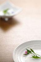 和食器 20013025163| 写真素材・ストックフォト・画像・イラスト素材|アマナイメージズ