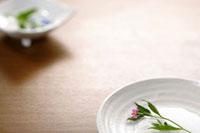和食器 20013025205| 写真素材・ストックフォト・画像・イラスト素材|アマナイメージズ