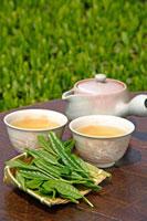 日本茶 20013025372  写真素材・ストックフォト・画像・イラスト素材 アマナイメージズ
