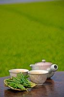 日本茶 20013025373  写真素材・ストックフォト・画像・イラスト素材 アマナイメージズ
