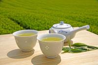 日本茶 20013025374  写真素材・ストックフォト・画像・イラスト素材 アマナイメージズ