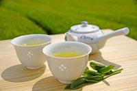 日本茶 20013025376  写真素材・ストックフォト・画像・イラスト素材 アマナイメージズ