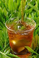 アイスウーロン茶