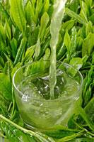 冷茶 20013025401  写真素材・ストックフォト・画像・イラスト素材 アマナイメージズ