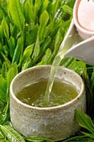 日本茶 20013025403  写真素材・ストックフォト・画像・イラスト素材 アマナイメージズ