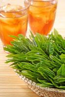 緑茶葉 20013025418  写真素材・ストックフォト・画像・イラスト素材 アマナイメージズ