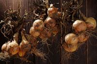 玉ねぎ 20013025501| 写真素材・ストックフォト・画像・イラスト素材|アマナイメージズ