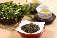 日本茶 20013027469  写真素材・ストックフォト・画像・イラスト素材 アマナイメージズ