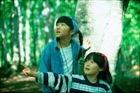 森の中の女の子二人 20014000060| 写真素材・ストックフォト・画像・イラスト素材|アマナイメージズ