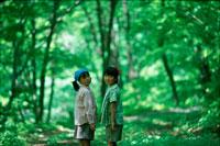 森の中の子供二人 20014000083| 写真素材・ストックフォト・画像・イラスト素材|アマナイメージズ
