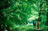 森の中を歩く子供