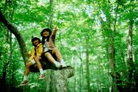 木の上の女の子2人 20014001070| 写真素材・ストックフォト・画像・イラスト素材|アマナイメージズ