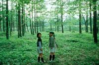 林の中の女の子2人 20014001074| 写真素材・ストックフォト・画像・イラスト素材|アマナイメージズ
