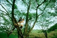 木の上の女の子2人