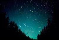 森の木々と北斗七星と北極星
