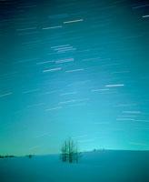 星空と雪原と木
