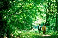 林の中の道を歩く女の子2人