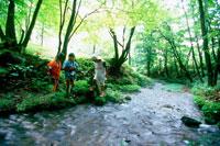 林の中の小川で遊ぶ子供3人