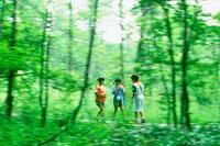 林の中の子供3人