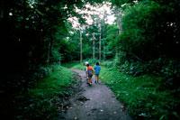 林の中の道を歩く子供3人後姿