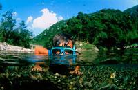 川に潜る子供