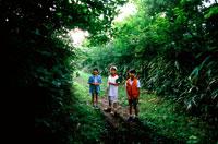 夏の野山の中の子供3人