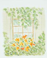 窓と花のイラスト
