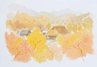 紅葉する山村のイラスト 20014003133| 写真素材・ストックフォト・画像・イラスト素材|アマナイメージズ
