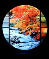 丸窓からの紅葉の渓流