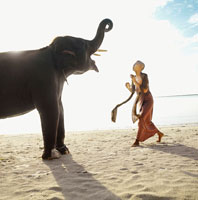 Woman and elephant on beach