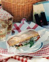 A sandwich for a picnic