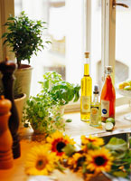 plants and bottles on the table