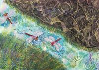 小川の上を飛ぶ赤とんぼ
