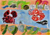カニのオスとメス 20020001276| 写真素材・ストックフォト・画像・イラスト素材|アマナイメージズ