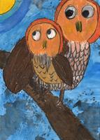 フクロウ、木、自然
