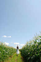 トウモロコシ畑と女性