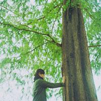 木に手をあてて目を閉じている女性 20021000591| 写真素材・ストックフォト・画像・イラスト素材|アマナイメージズ
