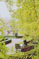 紅葉した銀杏の木と公園で読書する女性 20021000594A| 写真素材・ストックフォト・画像・イラスト素材|アマナイメージズ