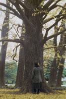 木に手をあてる女性の後ろ姿