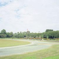 夢の島公園 20021000782| 写真素材・ストックフォト・画像・イラスト素材|アマナイメージズ