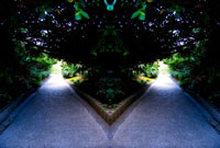シンメトリーの道