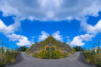 シンメトリーの道 20021000835| 写真素材・ストックフォト・画像・イラスト素材|アマナイメージズ