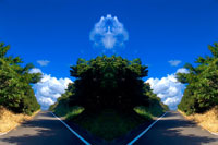 シンメトリーの道路