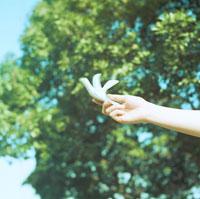 鳥の模型を持つ女性の手