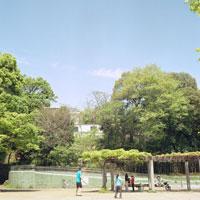 公園と緑 20021001070| 写真素材・ストックフォト・画像・イラスト素材|アマナイメージズ
