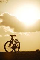 夕暮れの公園に自転車