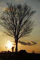 夕暮れの公園 20021001141| 写真素材・ストックフォト・画像・イラスト素材|アマナイメージズ