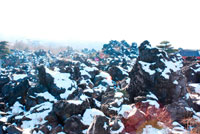 雪の鬼押出 20021001156| 写真素材・ストックフォト・画像・イラスト素材|アマナイメージズ